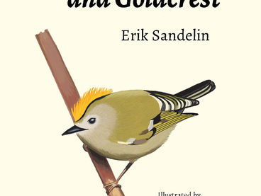15_Erik_Sandelin_2018_designer-and-goldcrest.jpg