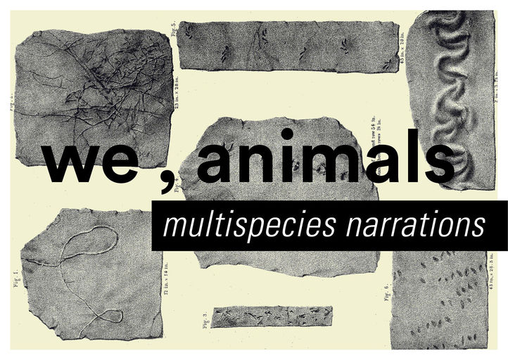 we_animals_multispecies_narrations_small.jpg